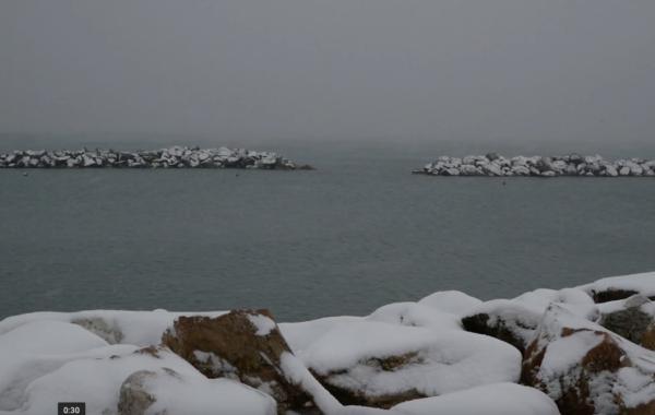 Marina di Pisa con la neve.. e non solo